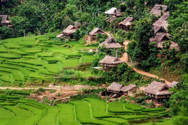 Khu bảo tồn thiên nhiên Pù Luông
